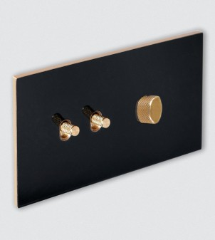 Plate with toggle switches and dimmer