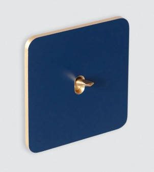 Electric switch plate with toggle