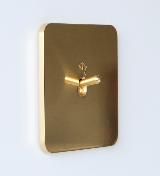 Brass switch plates with toggles