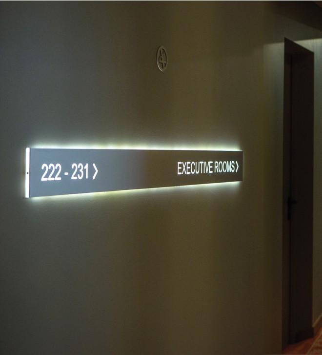 Internally illuminated signs